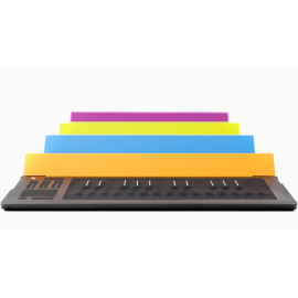 ROLI Flip Case Sky for RISE 25